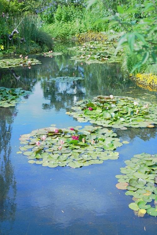 モネの庭_a0292060_11153068.jpg