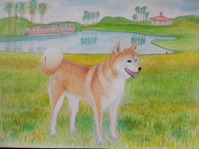 '16,5,27(金)こころちゃんの絵を描き始めたYO!_f0060461_1031745.jpg
