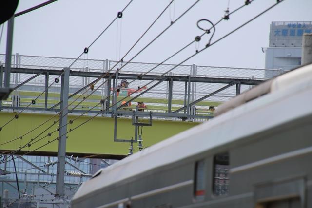 東海道本線JR岸辺駅にて・・・・貨物列車レッドサンダーに逢う _d0181492_2192439.jpg