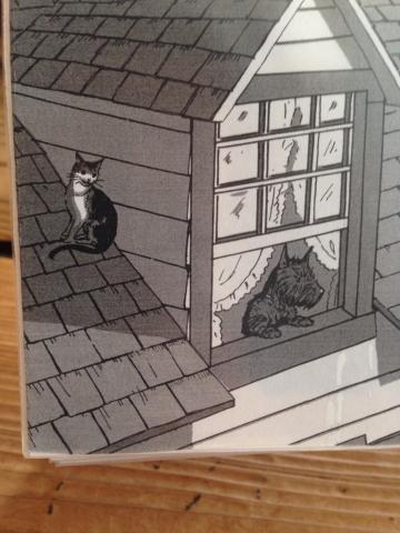 カブと窓と猫_e0055098_16153028.jpg