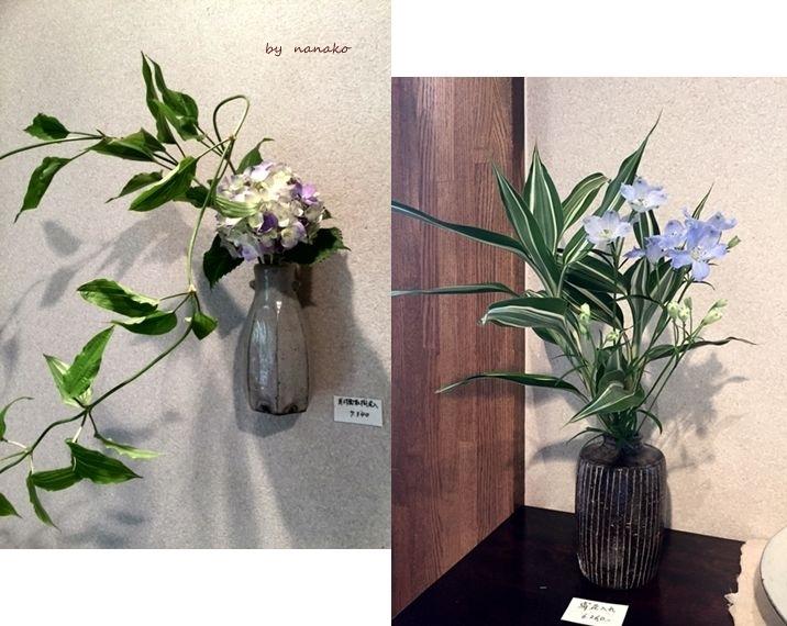 新妻陽子さんの器_c0364500_22503291.jpg