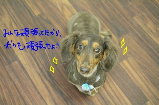 天ぷら_b0130018_00125262.jpg