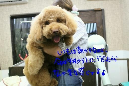 天ぷら_b0130018_00130979.jpg