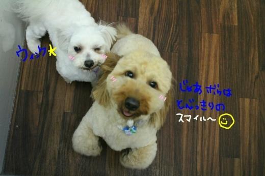 天ぷら_b0130018_00232867.jpg