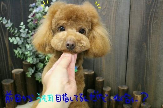 天ぷら_b0130018_20023554.jpg