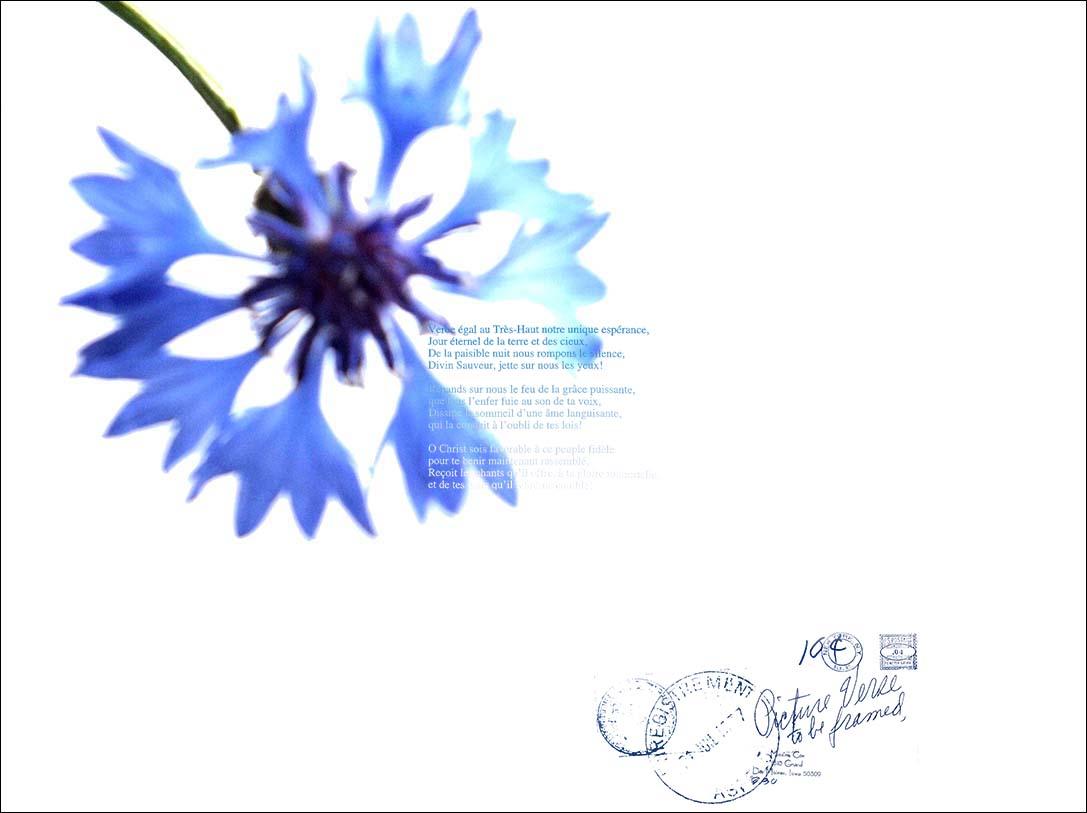 f0198771_2351210.jpg