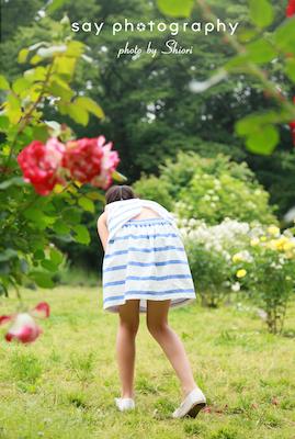 秘密の花園_d0220593_2371519.jpg
