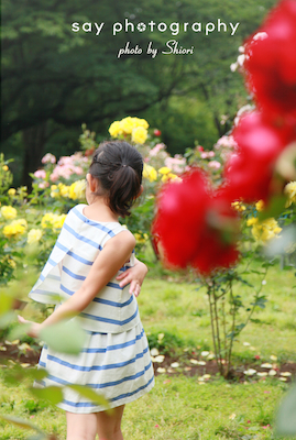 秘密の花園_d0220593_2373784.jpg
