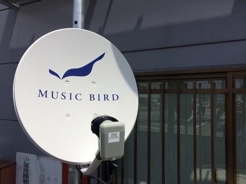 ☆空から届くミュージック    MUSIC BIRD☆_c0113001_1225282.jpg