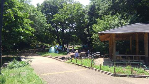花島公園_c0187906_1662668.jpg