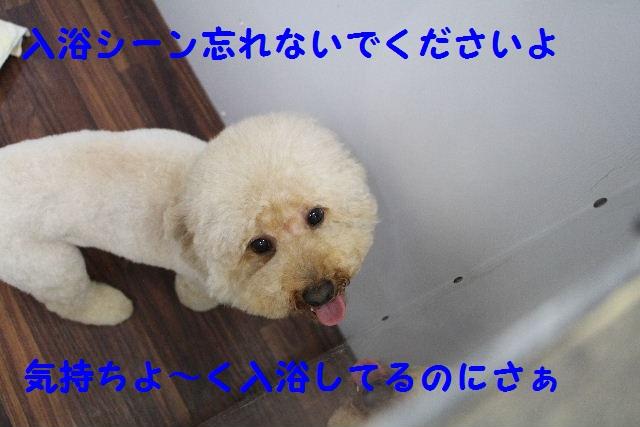 長風呂の秘訣は・・・_b0130018_812592.jpg