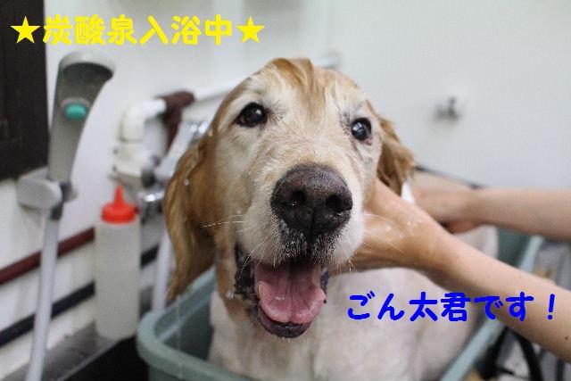 長風呂の秘訣は・・・_b0130018_8224090.jpg