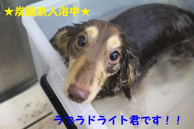 長風呂の秘訣は・・・_b0130018_85531.jpg