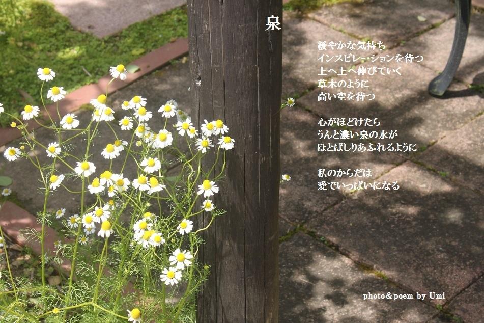 f0351844_15170687.jpg
