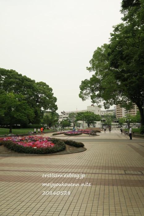 爽やかな 朝さんぽ_e0348754_11464115.jpg