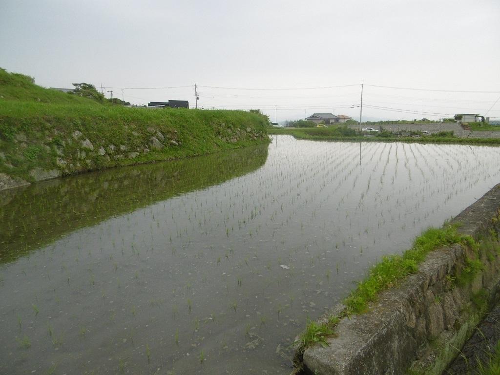 雨の日曜日_f0205367_22384178.jpg