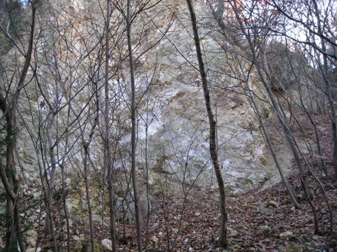 信夫山散歩情報の確かめ~信夫山の魅力と聖性の維持⑲_a0087378_4382451.jpg