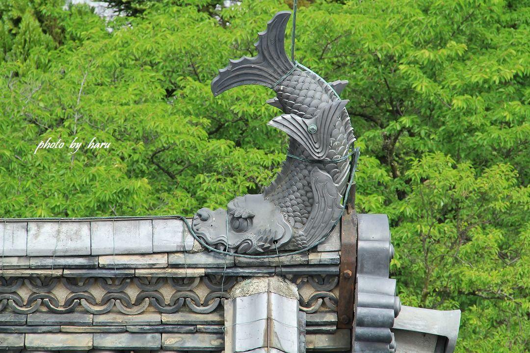 松本城_f0297537_09371023.jpg