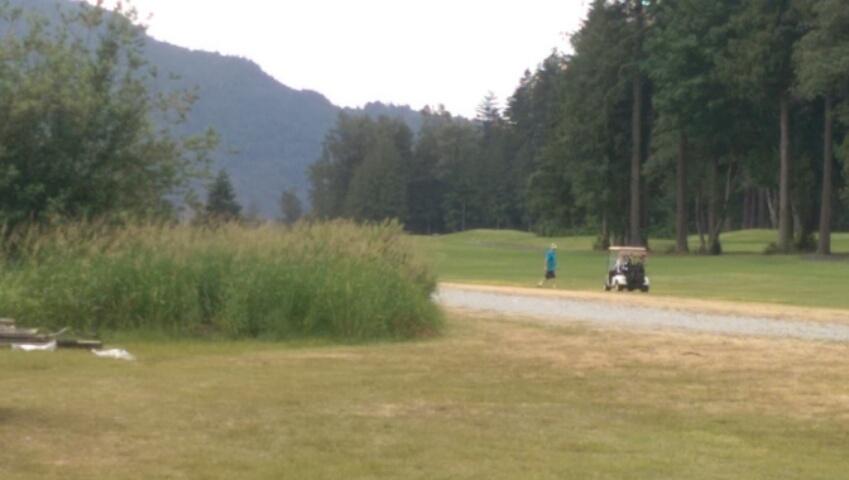 Airstrip by Golf Course_a0025444_8464128.jpg