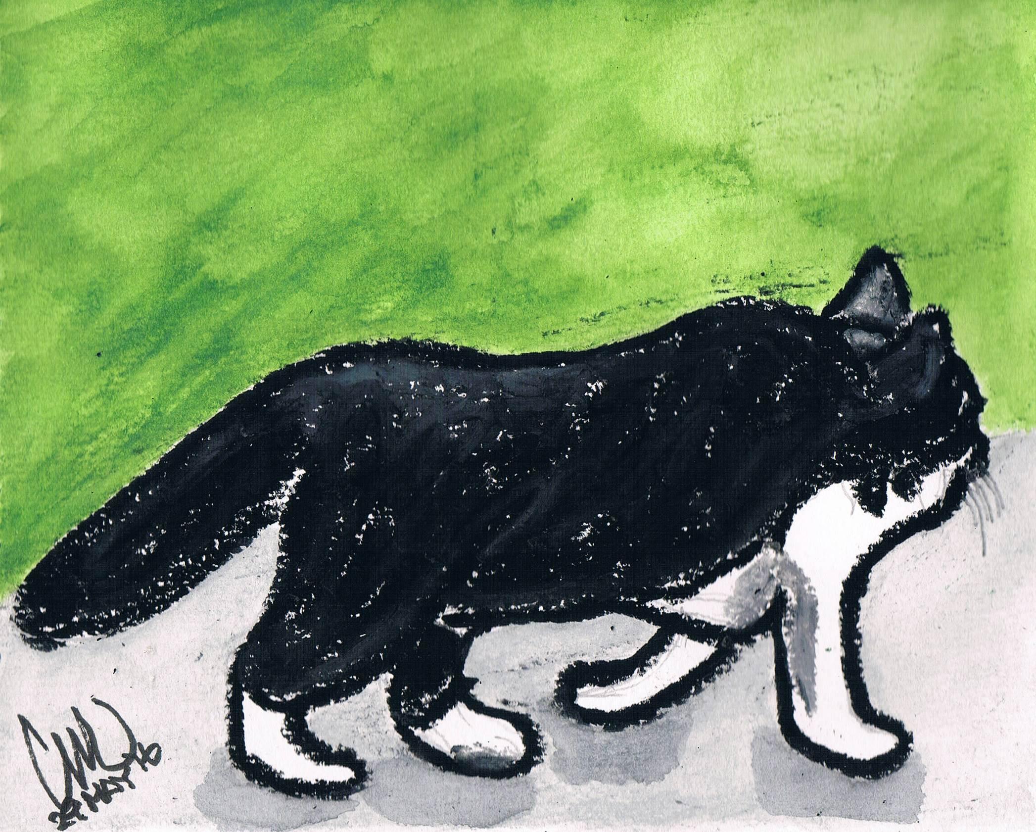 太った黒猫_e0232277_10304616.jpg