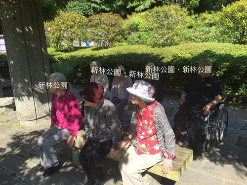 喜楽家  鎌倉の5月     _a0135191_10351469.jpg