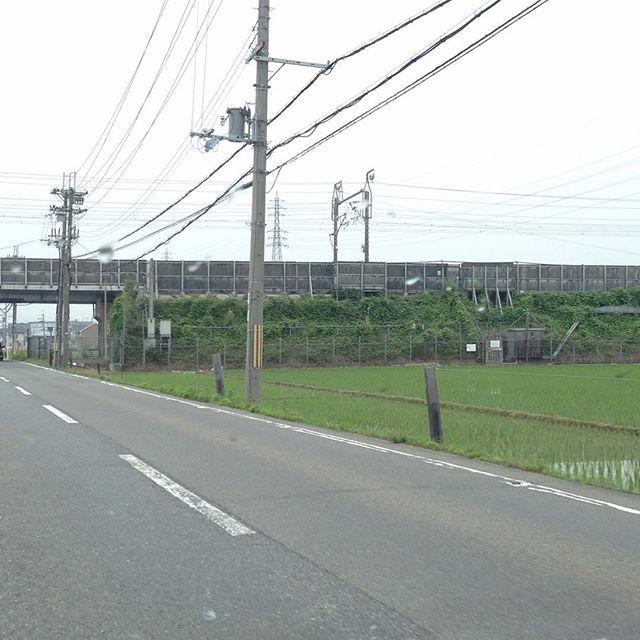 懐かしき東海道新幹線軌道内立ち入り門扉。_a0334793_02041954.jpg