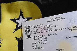 新潟pillows!_e0290193_20222311.jpg