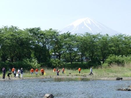 富士河口湖町1万人の清掃活動_c0193896_08302854.jpg