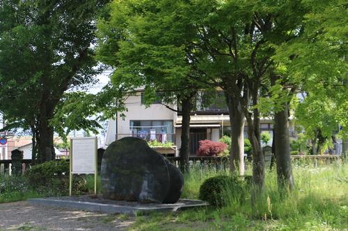 風が薫る朝の米沢キャンパス、5月31日(小満・末候)麦の秋至る・・・1_c0075701_1116167.jpg