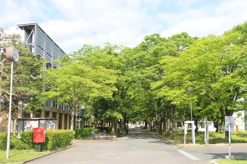 風が薫る朝の米沢キャンパス、5月31日(小満・末候)麦の秋至る・・・1_c0075701_11224671.jpg