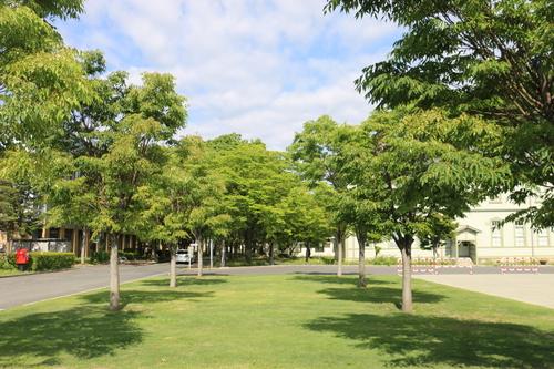 風が薫る朝の米沢キャンパス、5月31日(小満・末候)麦の秋至る・・・1_c0075701_11224956.jpg