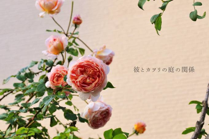 c0365716_18474036.jpg