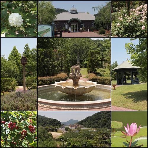深山イギリス庭園_c0026824_1892440.jpg