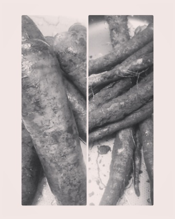お取り寄せ有機野菜✨_b0110035_18451146.jpg