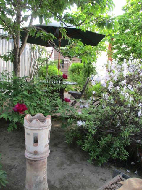 お庭でメニューの研究_a0279743_6574333.jpg