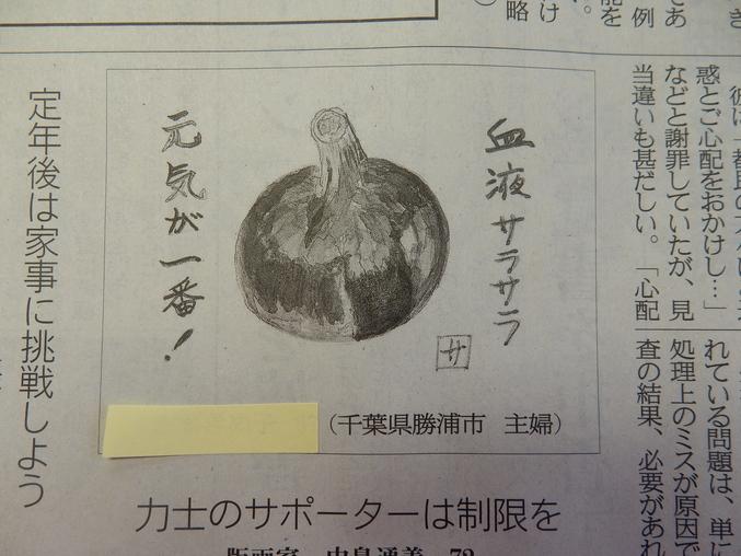 '16,5,31(火)紫玉ねぎの絵が新聞に載ったYO!_f0060461_1135319.jpg