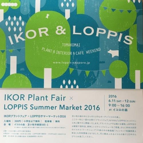 ikoro plant fair×LOPPIS summer market2016_f0205865_11354342.jpeg