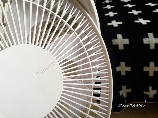 今年も扇風機を出しました!グリーンファン&カモメファン!_a0341288_10335256.jpg