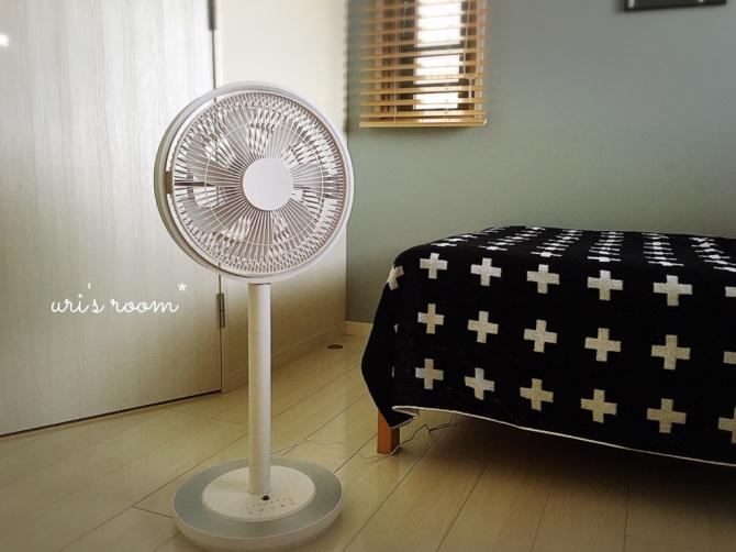 今年も扇風機を出しました!グリーンファン&カモメファン!_a0341288_10335296.jpg