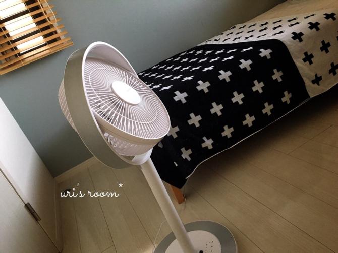 今年も扇風機を出しました!グリーンファン&カモメファン!_a0341288_10335300.jpg