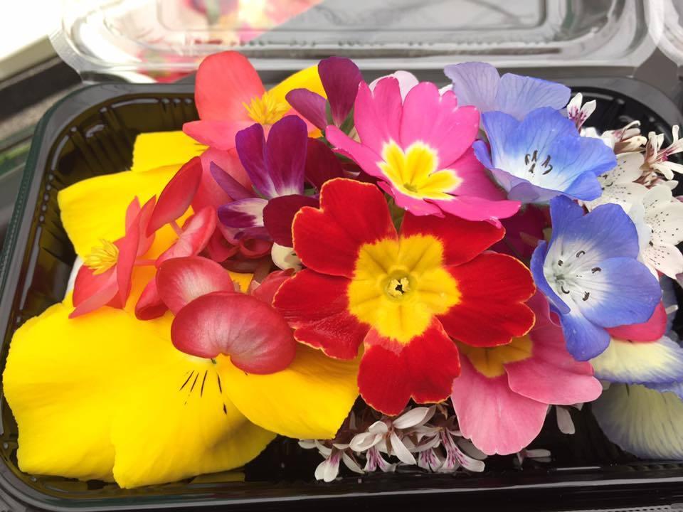 阿賀野市に導かれて〜花と緑の60日間〜_a0126418_18175755.jpg