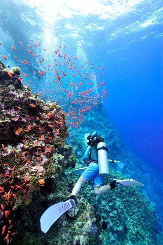 海の日開催!話題の無人島「JEEP島写真展」~宮地岩根~_c0221922_1144026.jpg