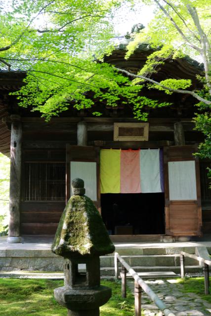 【蓮華寺】京都旅行 - 9 -_f0348831_06460980.jpg