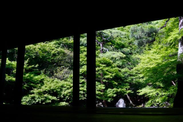 【蓮華寺】京都旅行 - 9 -_f0348831_08101833.jpg