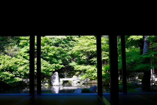 【蓮華寺】京都旅行 - 9 -_f0348831_08123266.jpg