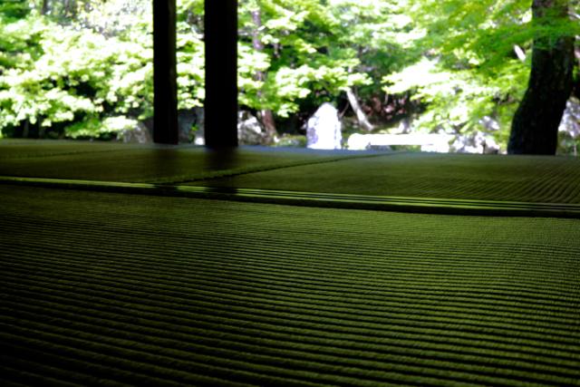 【蓮華寺】京都旅行 - 9 -_f0348831_08154608.jpg