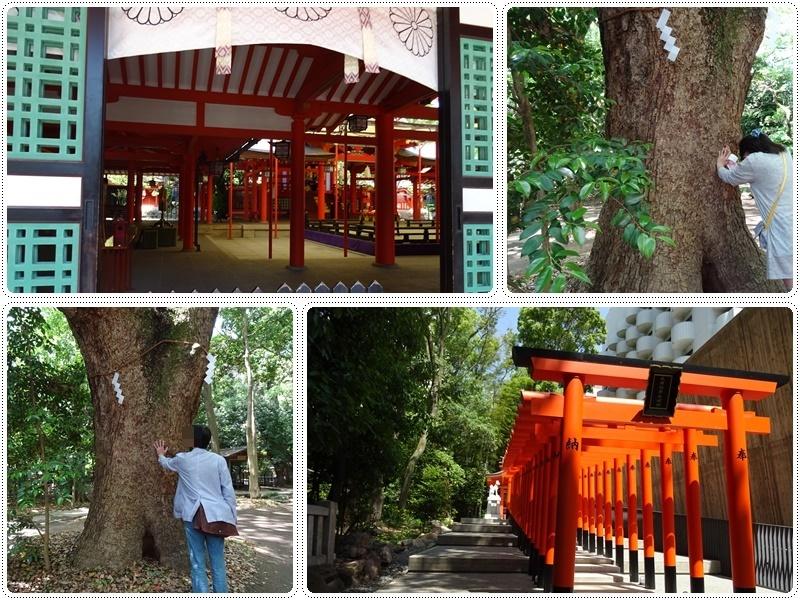 神戸・生田神社_b0236665_08144789.jpg