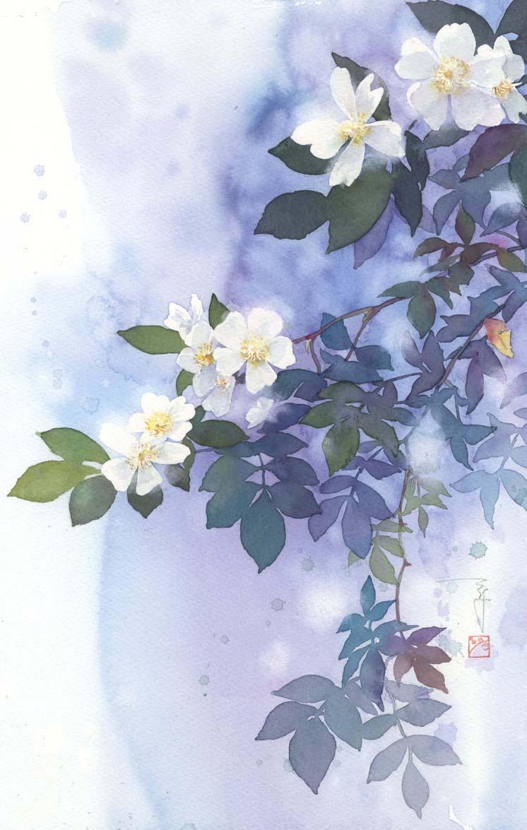 のばら 水彩画_f0176370_1619081.jpg