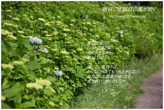 f0361079_11544170.jpg