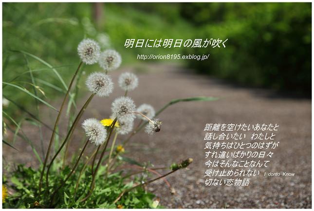f0361079_12243440.jpg